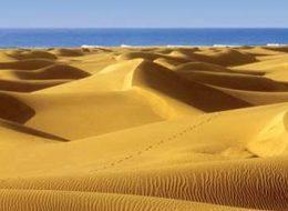 Gran Canaria Dunas