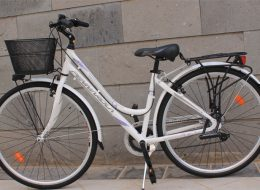Citybike Fuerteventura mieten