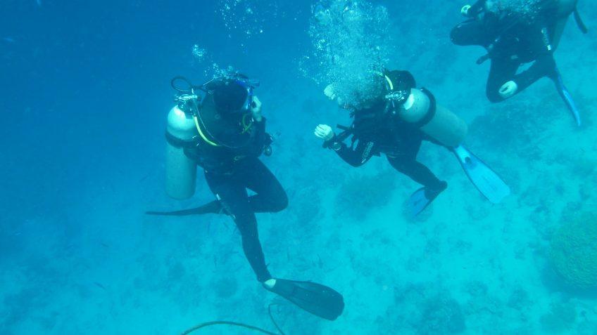 Tauchen, Fuerteventura, Open Water